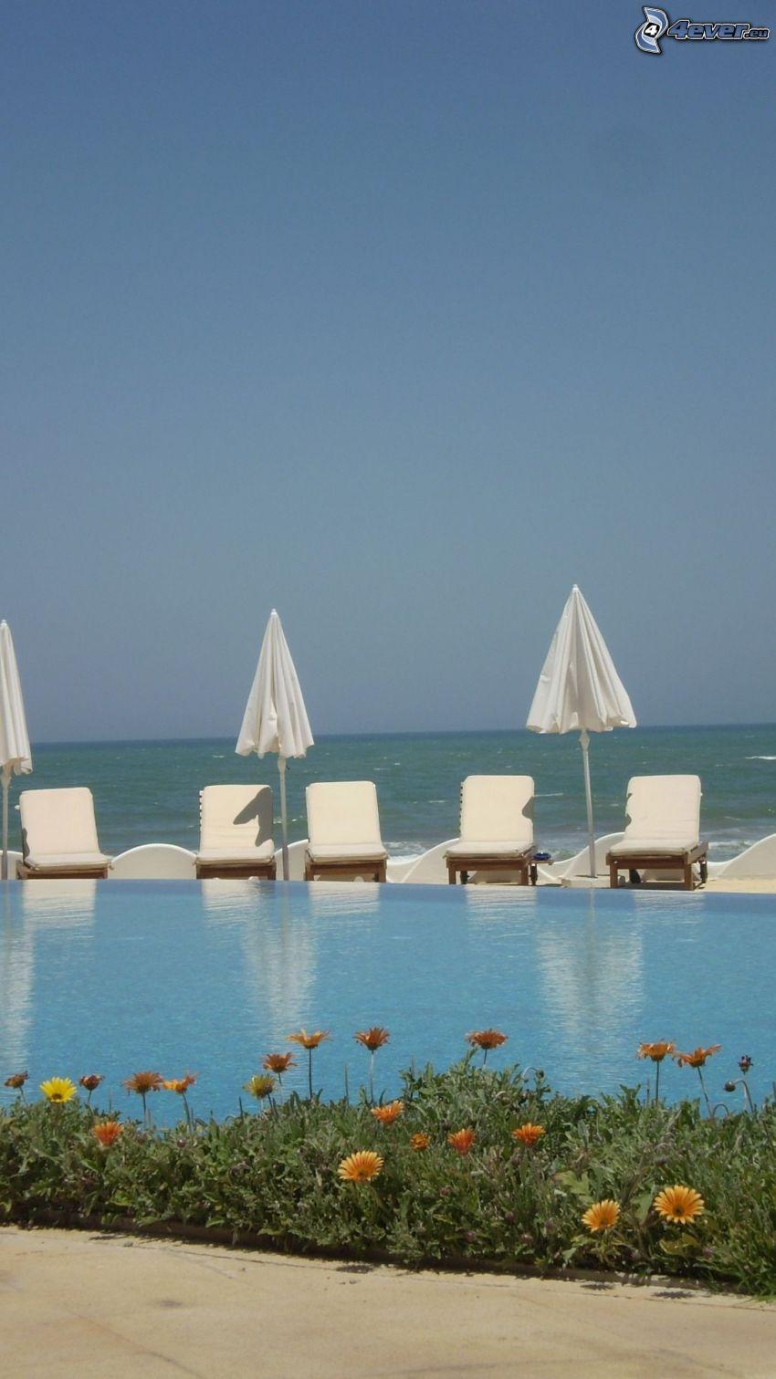 Liegestühle, Sonnenschirme, Bassin, Blumen, Blick auf dem Meer
