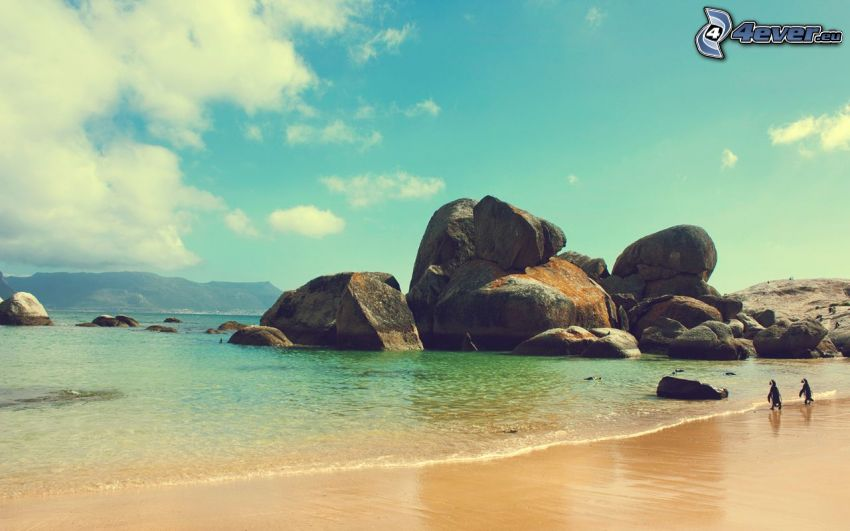 Meer, Steine, Strand