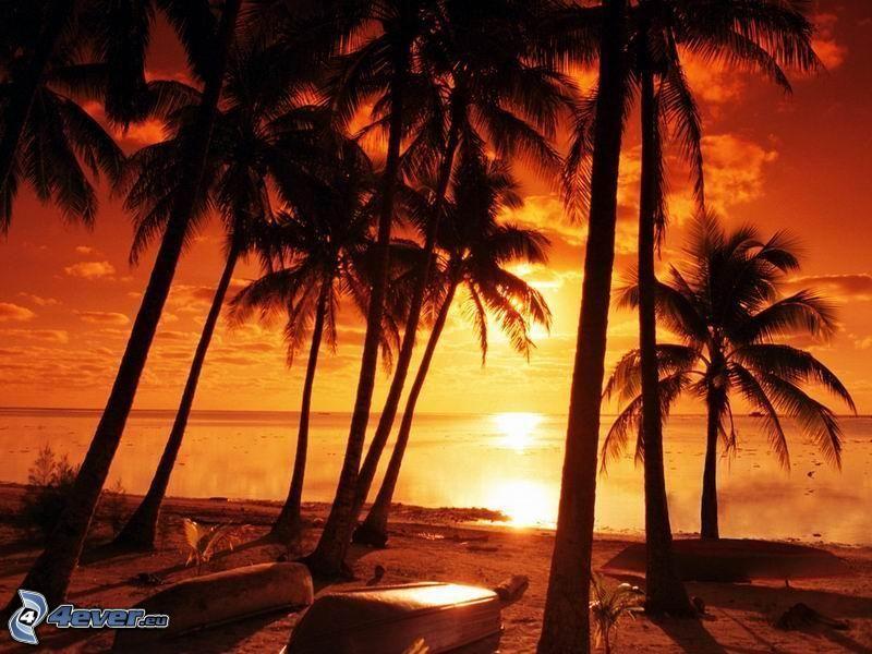 Orange Sonnenuntergang über dem Meer, Palmen am Strand, Boote, Haiti