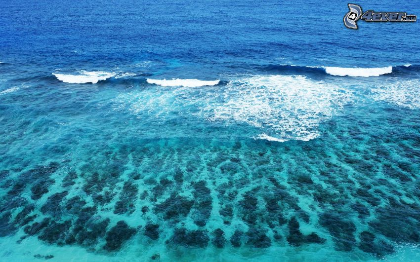 seichtes azurblaues Meer