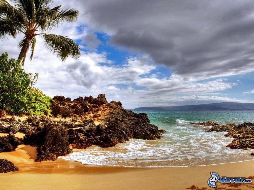 Strand, Felsen, Wolken, Palme