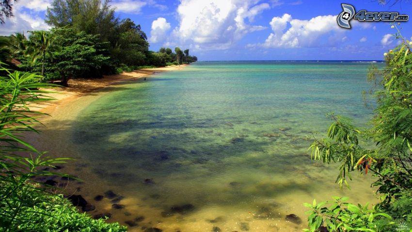 Strand, seichtes azurblaues Meer