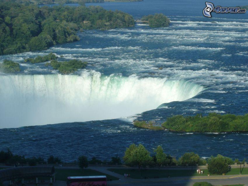 Niagarafälle, Bäume