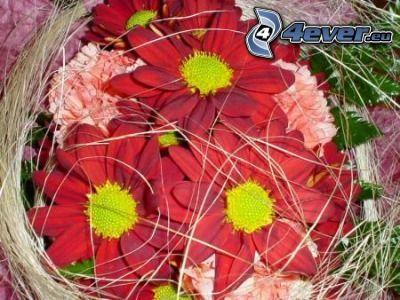 Blumensträuße, Pflanzen