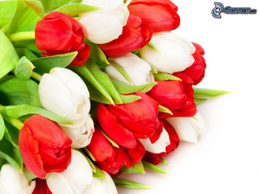 Blumensträuße, Tulpen