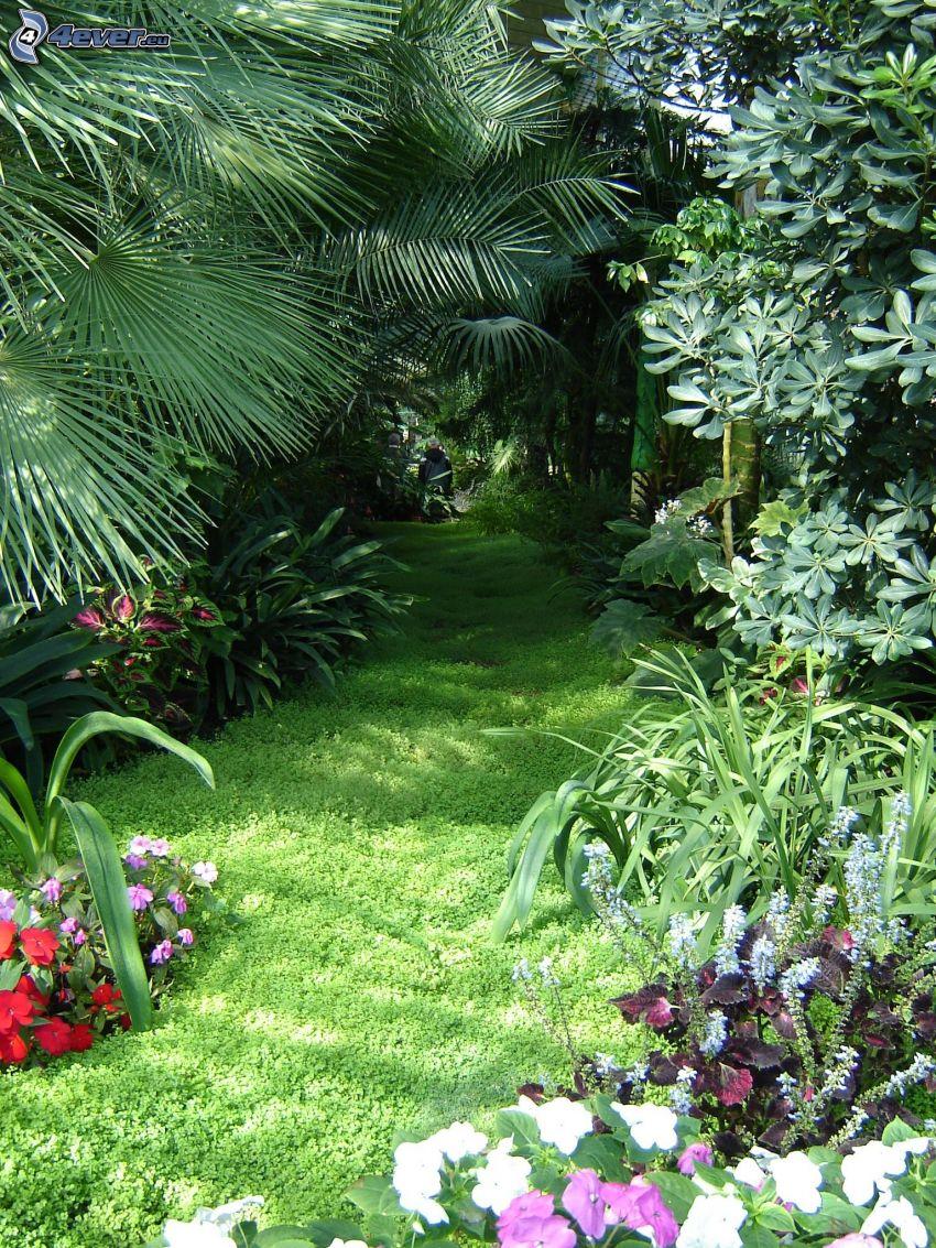 Botanischer Garten, Lednice, Grün, Blumen
