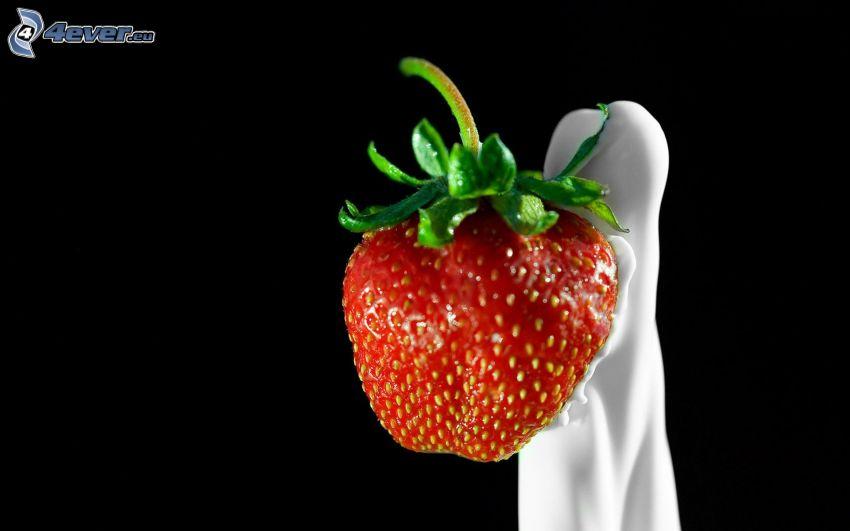 Erdbeere, Milch