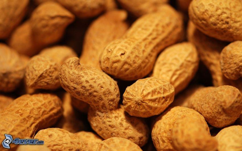Erdnüsse, Schale