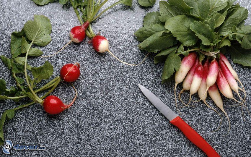 Garten-Rettich, Messer