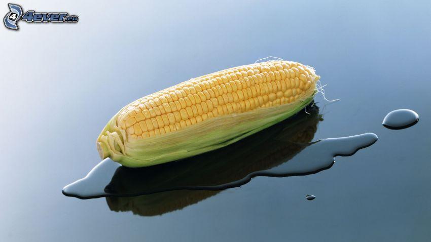 Mais, Wasser