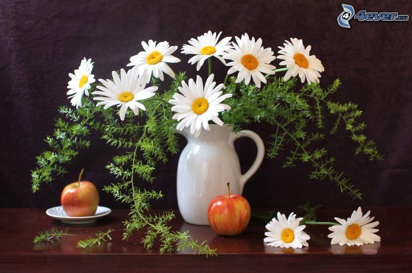 Gänseblümchen, Vase, Äpfel