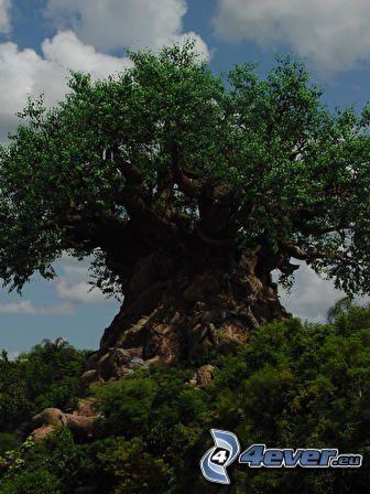 mächtiger Baum, Büsche, Steppe