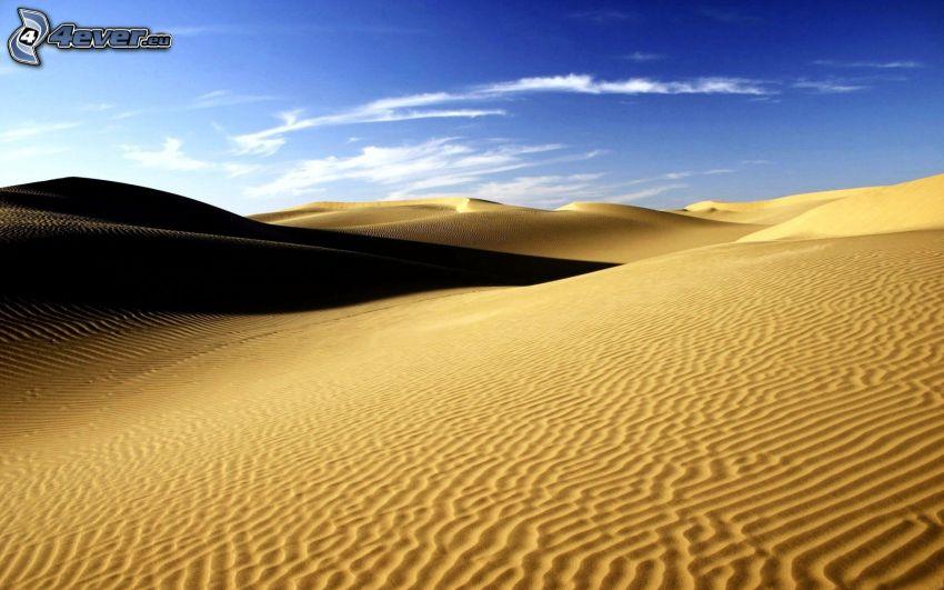 Sahara, Wüste