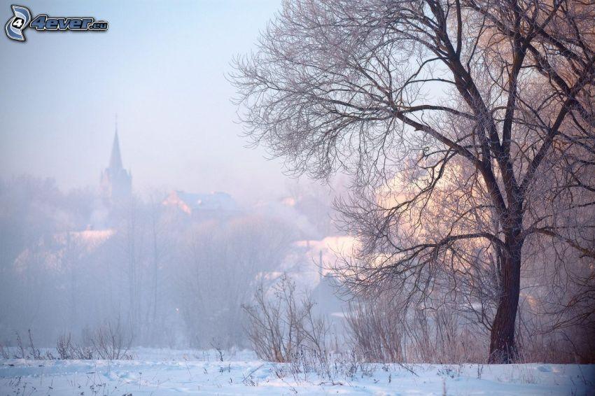 schneebedecktes Dorf, weitausladender Baum