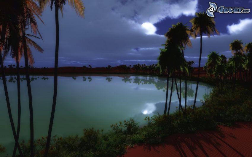 See, Nacht, Palmen