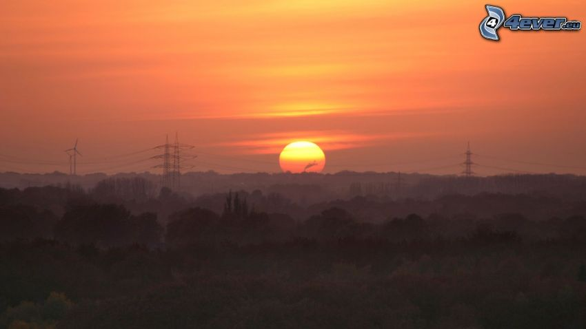Sonnenuntergang hinter dem Wald, elektrische Leitung, orange Himmel