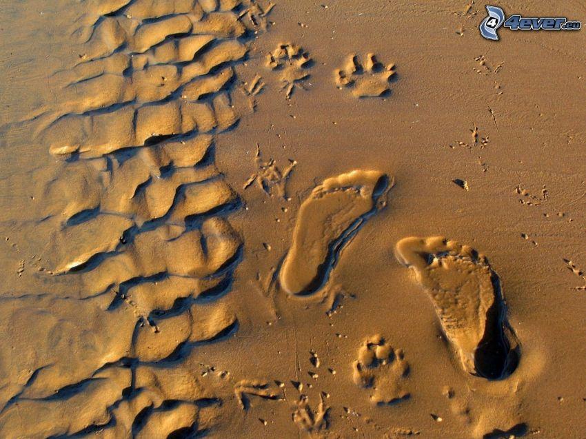 Spuren, Sand