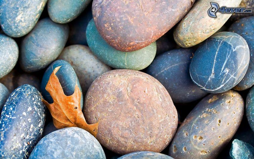 Steine, trockenes Blatt