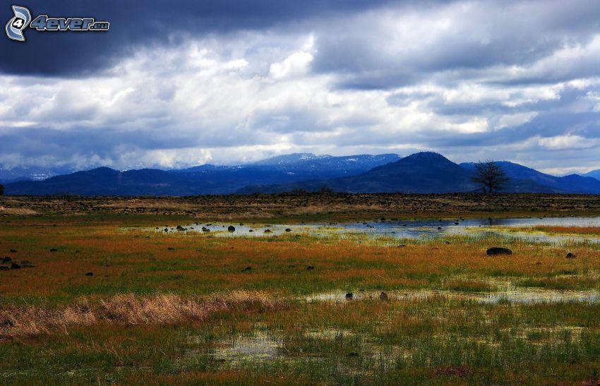 Sumpf, Hügel