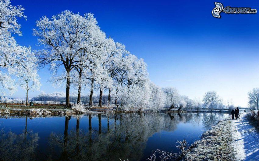 verschneite Bäume, Winterfluss, Spiegelung, Gehweg