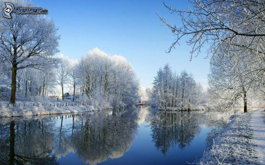 verschneite Bäume, Winterfluss