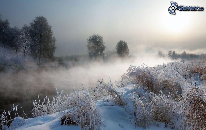 verschneite Landschaft, Boden Nebel