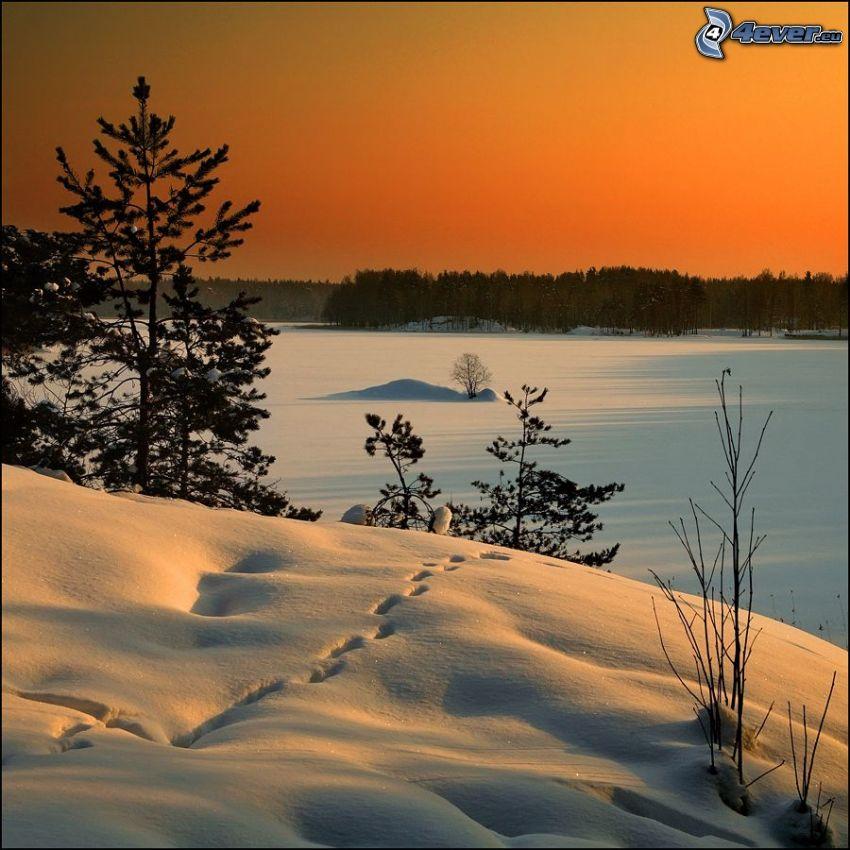 verschneite Landschaft, orange Sonnenuntergang, Spuren im Schnee