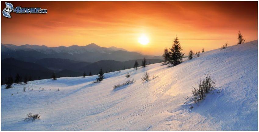 verschneiter Berg, Nadelbäume, orange Sonnenuntergang
