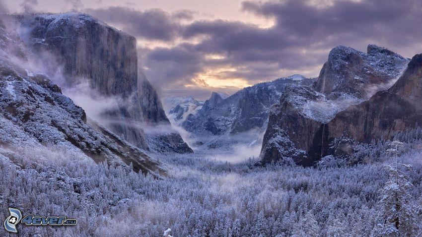 verschneiter Yosemite-Nationalpark, schneebedeckte Berge, felsige Berge, verschneiter Wald