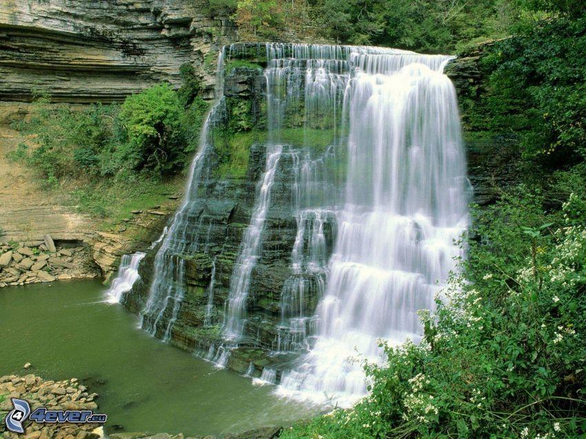 Wasserfall, Grün