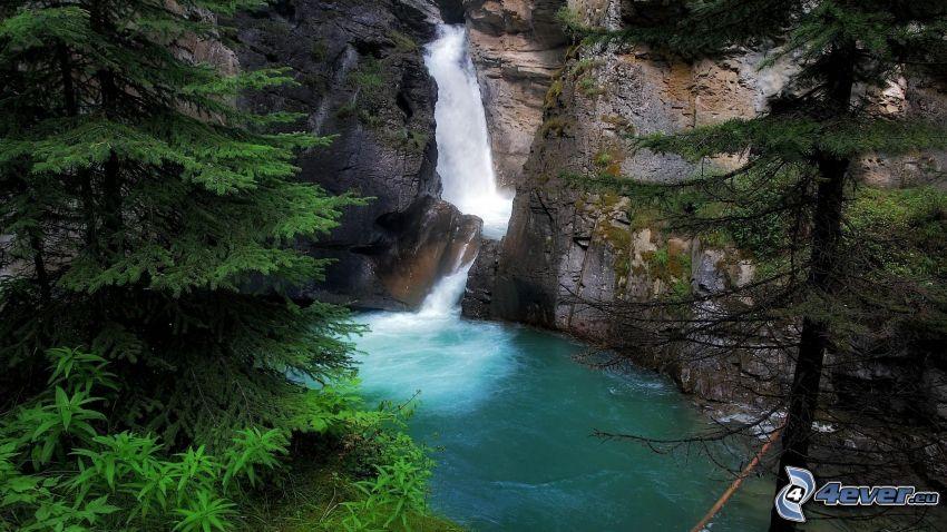 Wasserfall im Wald, Felsen, Nadelbäume