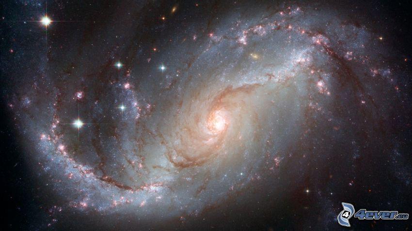 NGC 1672, Galaxie, Sterne