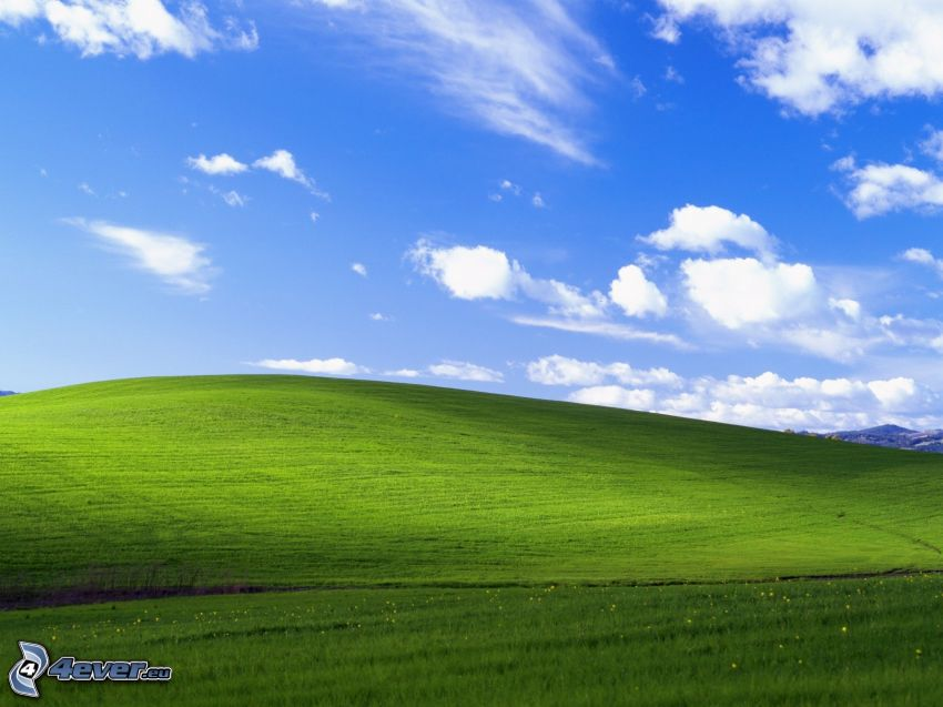 Wiese, Himmel, Wolken, Windows XP