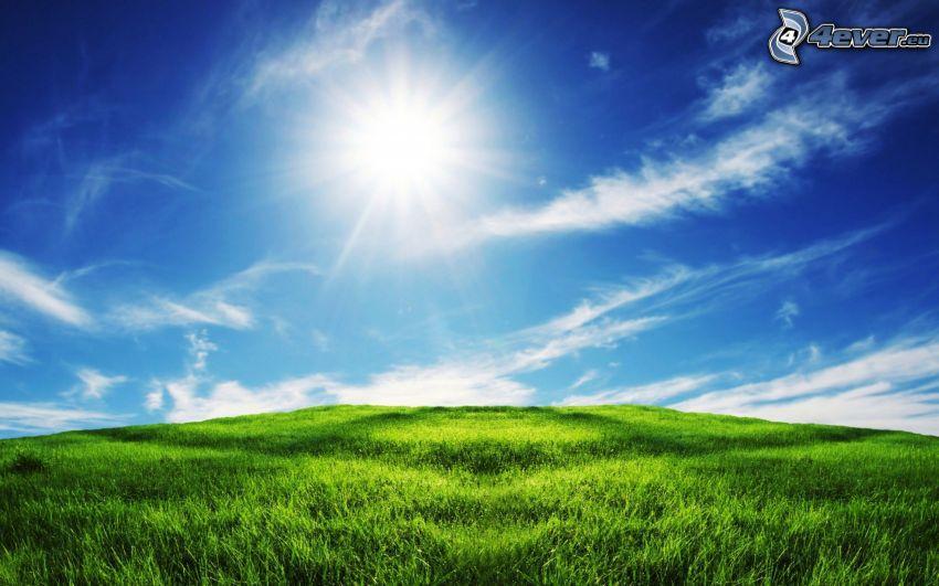 Wiese, Sonne, Wolken
