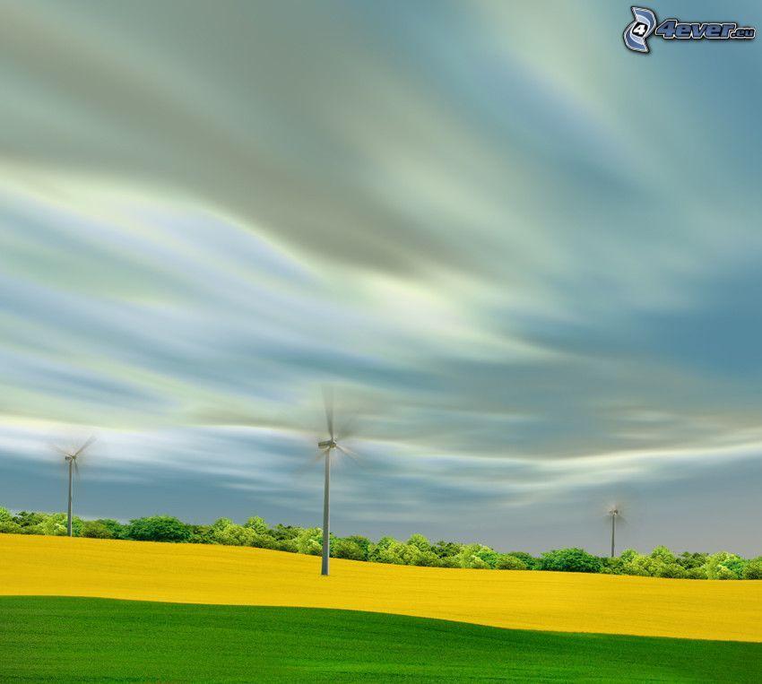 Windkraftwerke, Feld