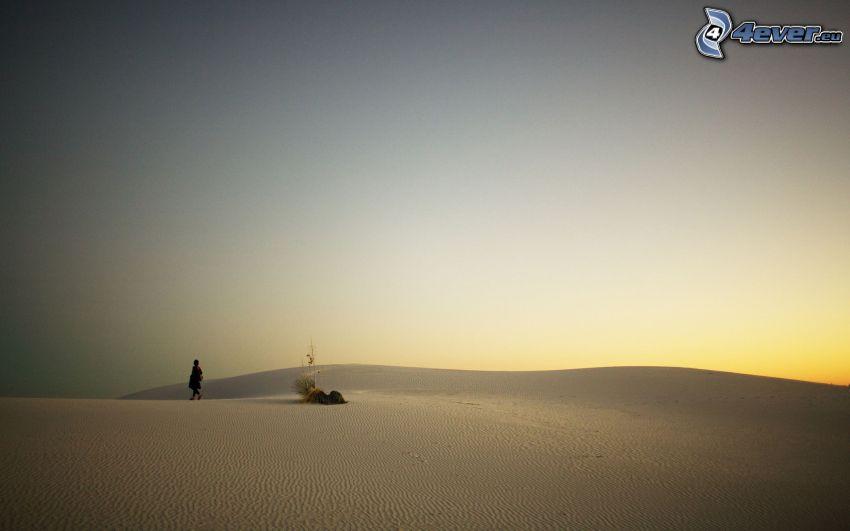 Wüste, Mensch, Abendhimmel