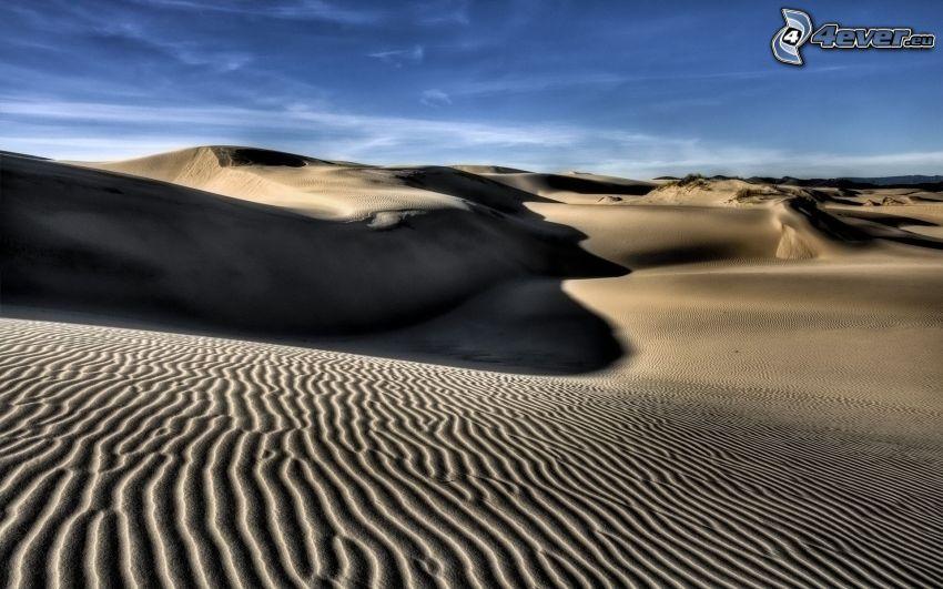 Wüste, Sanddünen