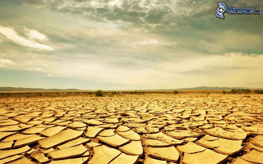 Wüste, trockene Boden