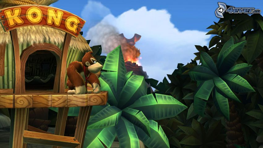 Donkey Kong Country Returns, Gorilla, Palmen