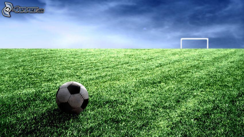 Fußballplatz, Ball, Tor