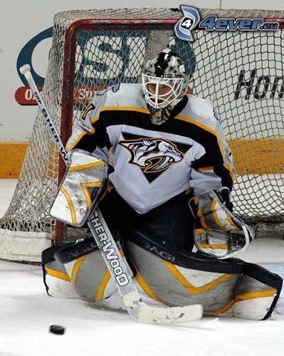 Chris Mason, Eishockeytorwart
