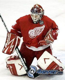 Eishockeytorwart, Detroit Red Wings