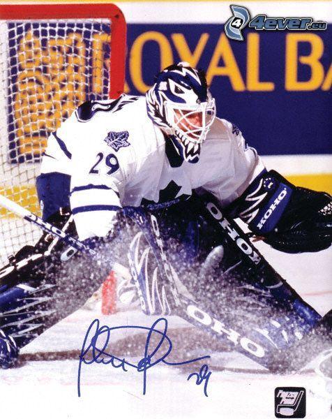 Félix Potvin, Hockey, Eishockeytorwart