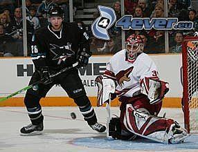 Hockey, NHL