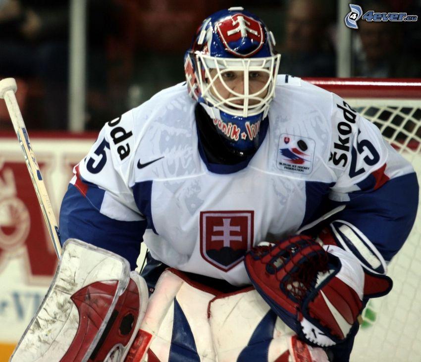 Ján Lašák, Hockey, Eishockeytorwart