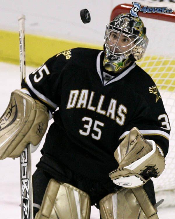 Marty Turco, Eishockeytorwart