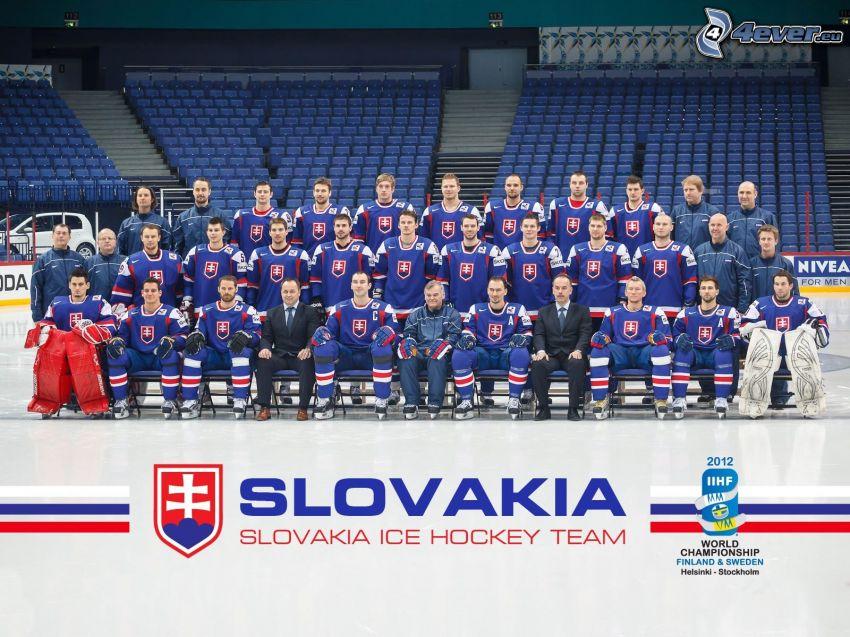 Slowakisches Eishockey-Team