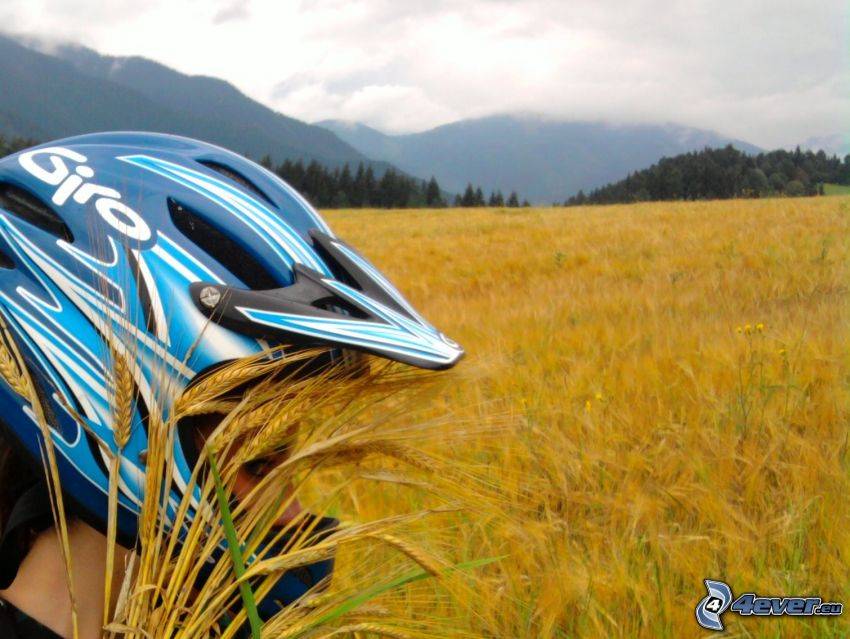 Frau in einem Helm, Mädchen, Feld, Getreide, Berge