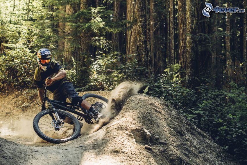mountainbiking, Wald