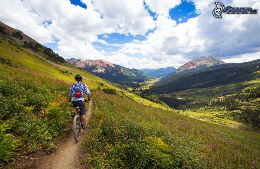 mountainbiking, Weg, felsige Berge, Wälder und Wiesen